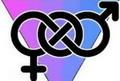 Botond Bálint: A genderterror előestéjén